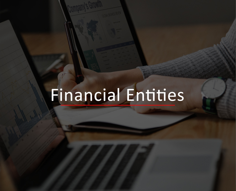 Financial Entities